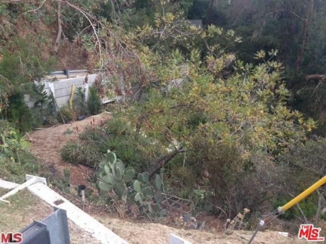 8354 Utica Drive, Los Angeles (City), CA 90046 (#19437316) :: Golden Palm Properties