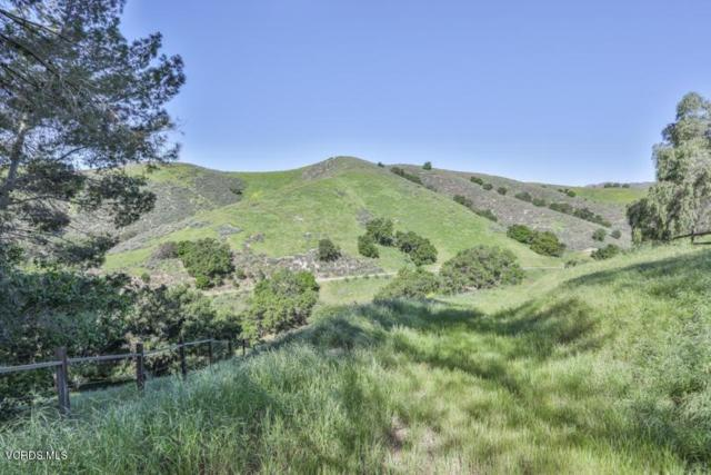 6015 Lapworth Drive, Agoura Hills, CA 91301 (#219002210) :: Randy Plaice and Associates