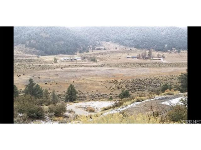 9317 Whispering Pines Road, Frazier Park, CA 93225 (#SR19049688) :: The Agency