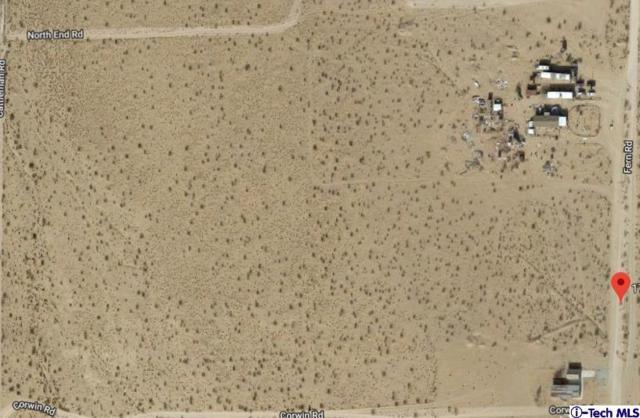 17381 Fern Drive, Lucerne Valley, CA 92356 (#319000805) :: The Agency