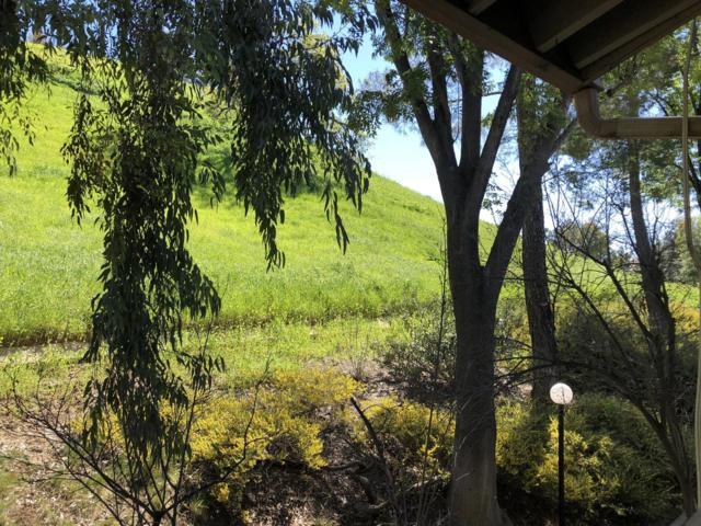 5800 Kanan Road #260, Agoura Hills, CA 91301 (#219002983) :: Lydia Gable Realty Group