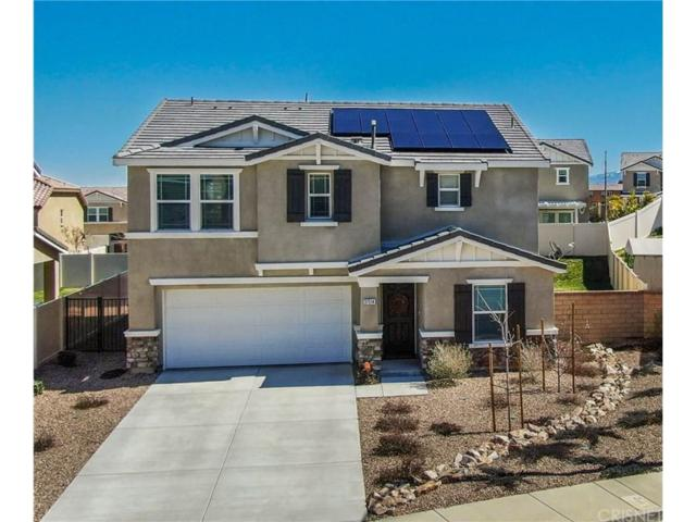 37514 Citron Place, Palmdale, CA 93551 (#SR19060436) :: The Real Estate Offices of Talbot and Watson
