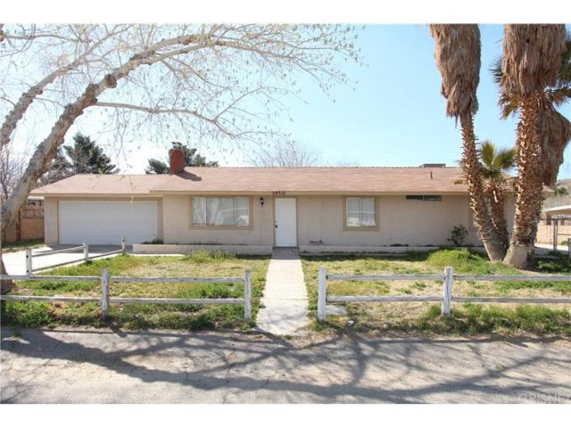 39313 168TH Street E, Palmdale, CA 93591 (#SR19064935) :: TruLine Realty
