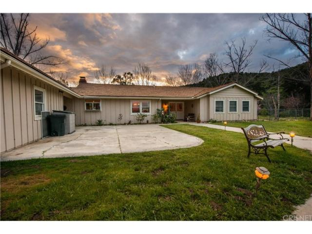 26615 Mountain Park Road, Canyon Country, CA 91387 (#SR19069747) :: Paris and Connor MacIvor