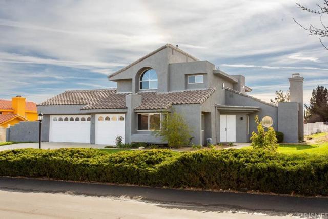 41110 Ridgegate Lane, Palmdale, CA 93551 (#SR19072309) :: The Agency