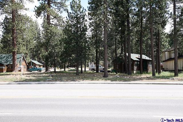 41631 Big Bear Boulevard, Big Bear, CA 92315 (#319001480) :: Lydia Gable Realty Group