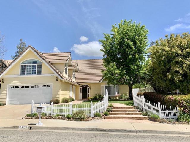 29155 Quail Run Drive, Agoura Hills, CA 91301 (#219004316) :: Lydia Gable Realty Group