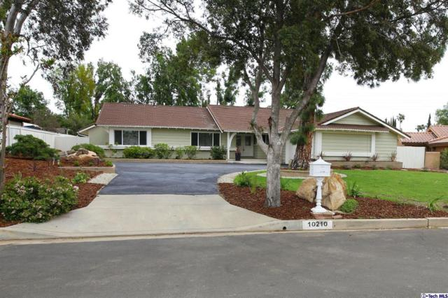10210 Crebs Ave, Northridge, CA 91324 (#319001475) :: TruLine Realty