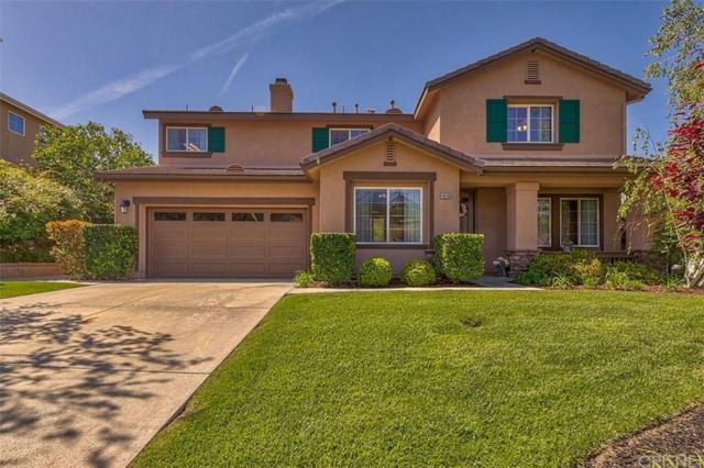 14246 Wrangell Lane, Canyon Country, CA 91387 (#SR19088034) :: Paris and Connor MacIvor