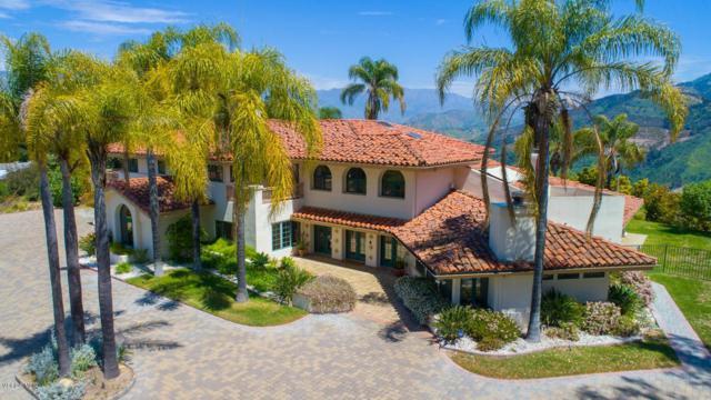 11020 Rodeo Drive, Oak View, CA 93022 (#219004743) :: Golden Palm Properties