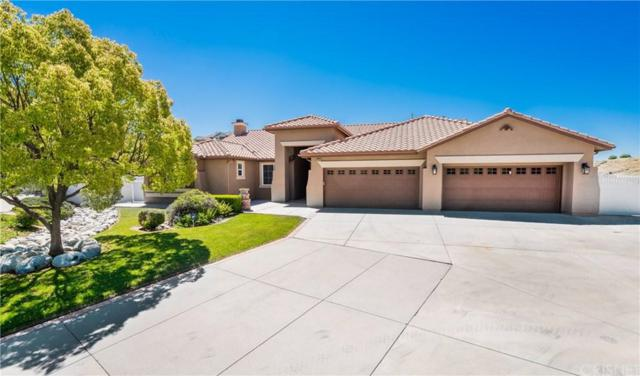 30406 Capallero Drive, Castaic, CA 91384 (#SR19095419) :: Paris and Connor MacIvor