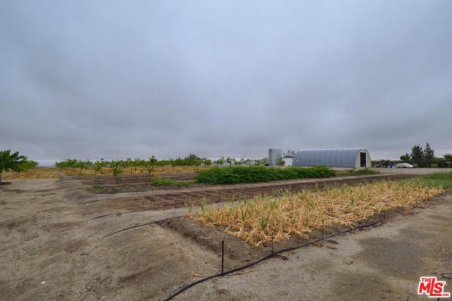 3002 Estero Road, Pinon Hills, CA 92372 (MLS #19466060) :: Deirdre Coit and Associates