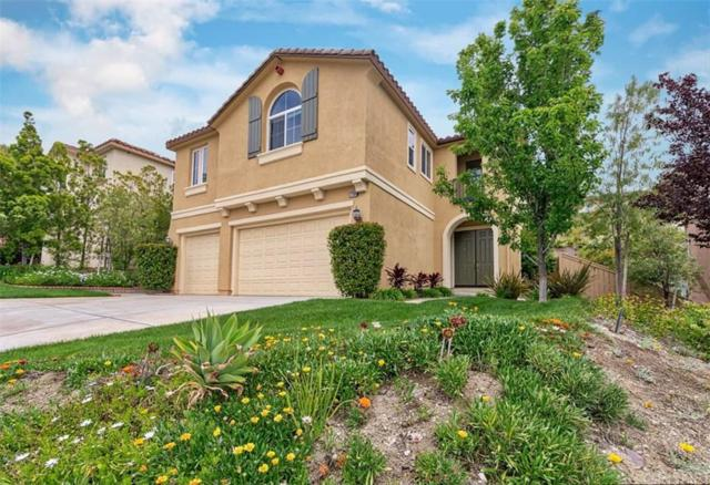 17308 Summit Hills Drive, Canyon Country, CA 91387 (#SR19109787) :: Paris and Connor MacIvor