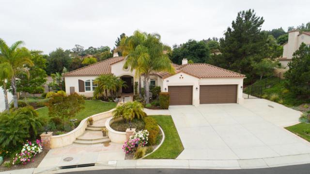 1743 Cervato Drive, Camarillo, CA 93012 (#219005874) :: Golden Palm Properties