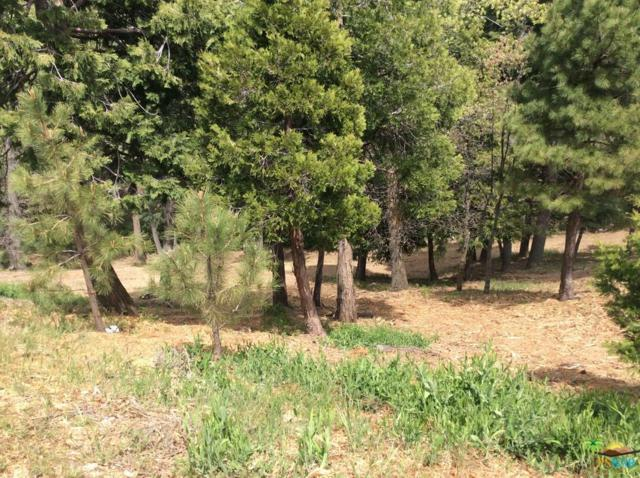 193 Mill Pond  Lot 2 Road #2, Lake Arrowhead, CA 92352 (#19467524PS) :: Paris and Connor MacIvor