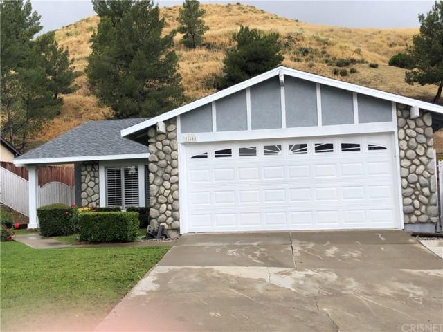 31685 Bobcat Way, Castaic, CA 91384 (#SR19114052) :: Lydia Gable Realty Group