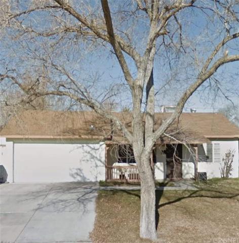227 E Avenue P3, Palmdale, CA 93550 (#SR19122395) :: Golden Palm Properties