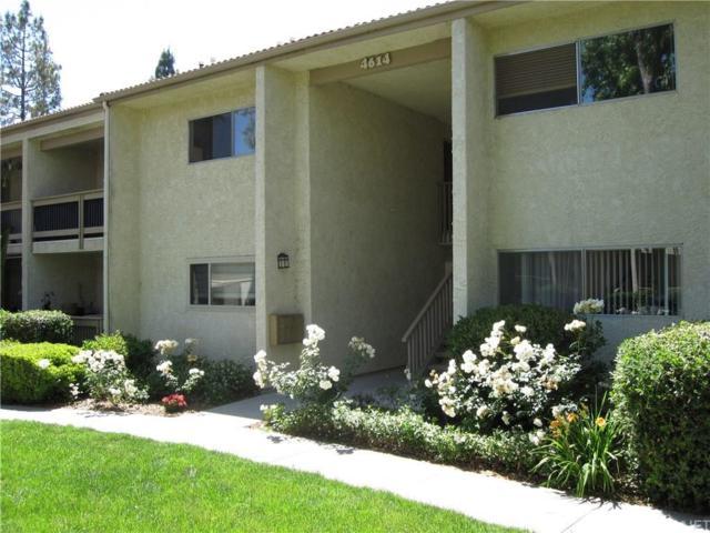 4614 Park Granada #60, Calabasas, CA 91302 (#SR19135507) :: The Fineman Suarez Team