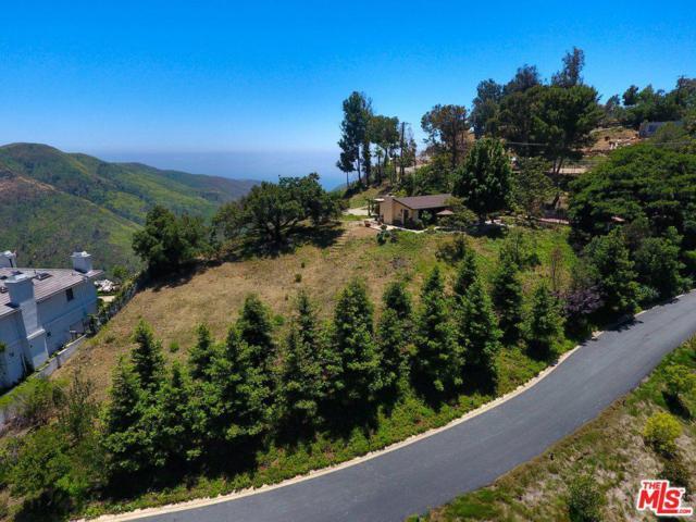 1996 Newell Road, Malibu, CA 90265 (#19476658) :: Lydia Gable Realty Group