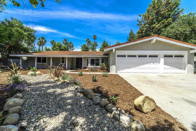 19619 Los Alimos Street, Chatsworth, CA 91311 (#219007279) :: The Fineman Suarez Team