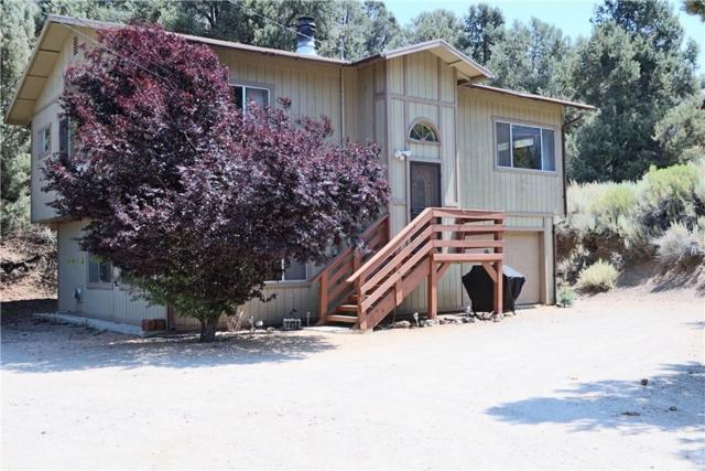 2050 Woodland Drive, Pine Mountain Club, CA 93222 (#SR19139874) :: Golden Palm Properties
