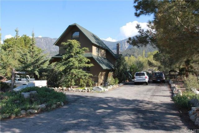 16424 Aleutian Drive, Pine Mountain Club, CA 93222 (#SR19141739) :: Golden Palm Properties