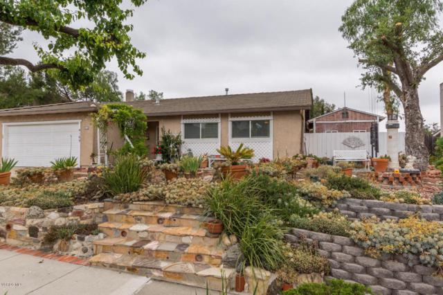 4169 W Potrero Road, Newbury Park, CA 91320 (#219007407) :: Lydia Gable Realty Group