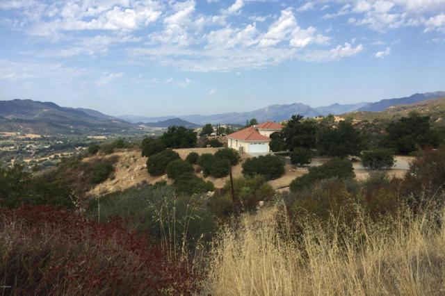 12599 Koenigstein Road, Santa Paula, CA 93060 (#219007485) :: Fred Howard Real Estate Team