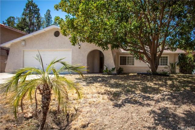 3549 Elm Drive, Calabasas, CA 91302 (#SR19143878) :: Golden Palm Properties