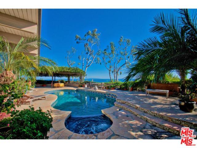 20394 Seaboard Road, Malibu, CA 90265 (#19480892) :: Golden Palm Properties