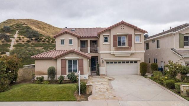 28738 Garnet Canyon Drive, Saugus, CA 91390 (#SR19149074) :: The Parsons Team
