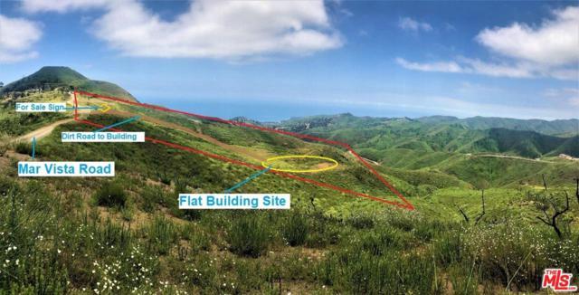 2501 Mar Vista Ridge Drive, Malibu, CA 90265 (#19482402) :: Golden Palm Properties