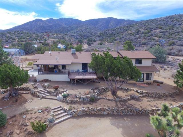 9950 Cima Mesa Road, Littlerock, CA 93543 (#SR19151362) :: Golden Palm Properties