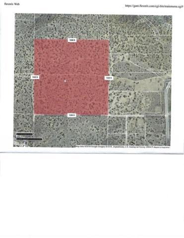 0 Homestead Rd & 126 Ste, Juniper Hills, CA 93543 (#SR19151451) :: Golden Palm Properties