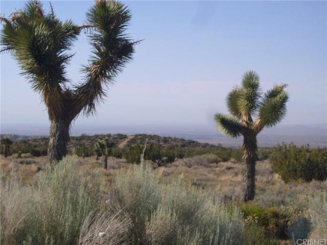 0 Vac/Cor Cima Mesa Pav /101St Ste, Juniper Hills, CA 93543 (#SR19151490) :: Golden Palm Properties