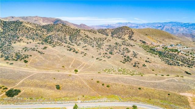 0 Red Rover Mine Road, Acton, CA 93510 (#SR19157506) :: The Fineman Suarez Team