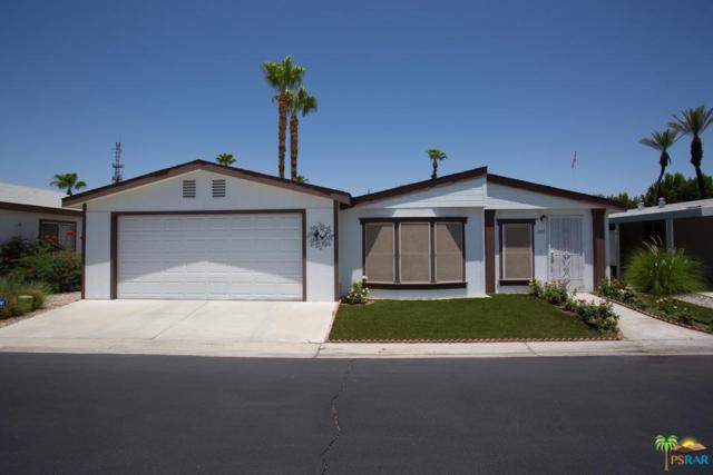 247 Settles Drive, Cathedral City, CA 92234 (#19487302PS) :: The Pratt Group