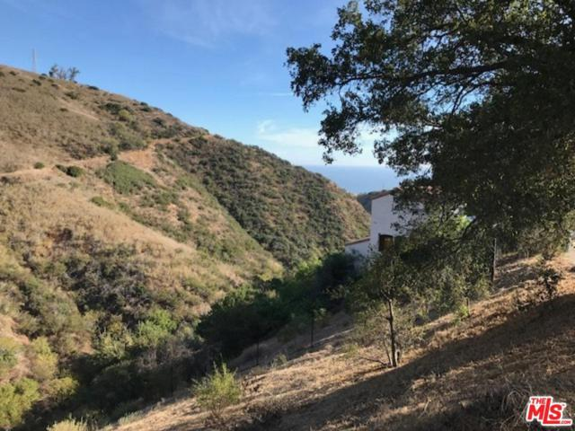 26557 Ocean View Dr, Malibu, CA 90265 (#19488088) :: The Agency