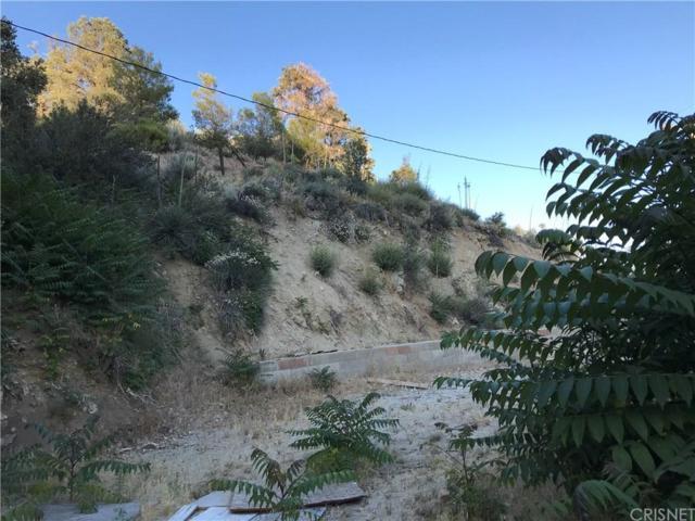800 Mautu, Frazier Park, CA  (#SR19166381) :: Golden Palm Properties