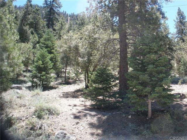 15024 Chestnut Drive, Pine Mountain Club, CA 93222 (#SR19167991) :: The Fineman Suarez Team