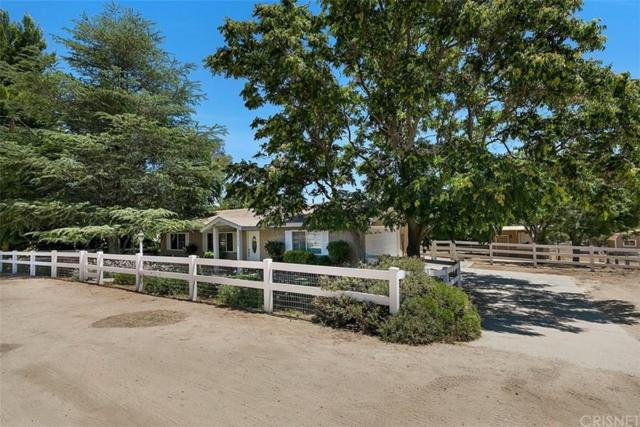 31720 2ND Street, Acton, CA 93510 (#SR19168748) :: The Fineman Suarez Team