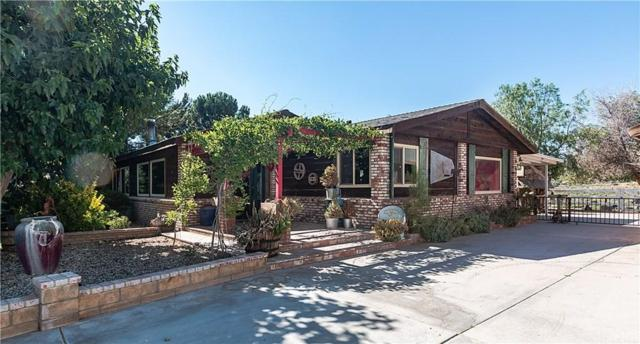 31731 Indian Oak Road, Acton, CA 93510 (#SR19169980) :: The Fineman Suarez Team