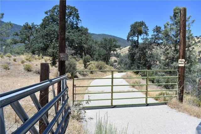 11800 Caliente Bodfish Road, Bodfish, CA 93518 (#SR19171208) :: TruLine Realty