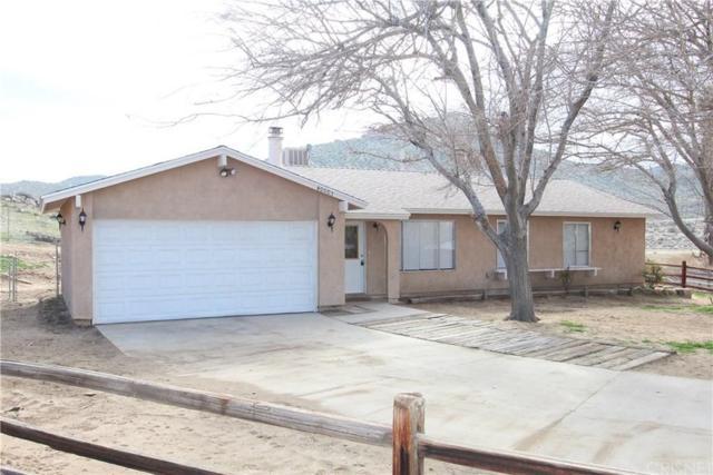 40003 167TH Street E, Palmdale, CA 93591 (#SR19172675) :: Golden Palm Properties