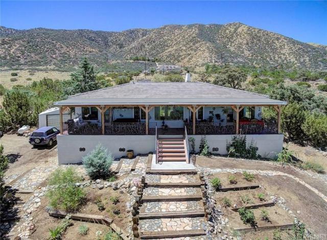 11046 Juniper Hills Road, Juniper Hills, CA 93543 (#SR19177334) :: Lydia Gable Realty Group