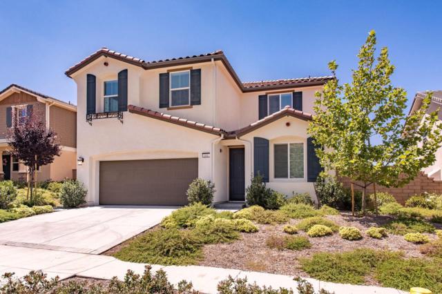 161 White Bark Lane, Simi Valley, CA 93065 (#219010182) :: TruLine Realty