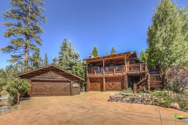 988 Grey Back Trails, Fawnskin, CA 92333 (#19510172PS) :: Lydia Gable Realty Group