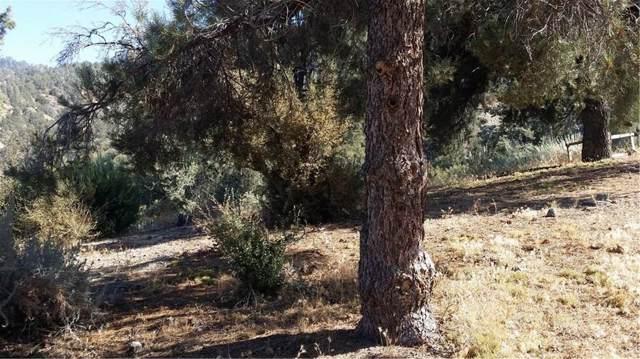 2316 Tirol, Pine Mountain Club, CA 93225 (#SR19220328) :: Golden Palm Properties