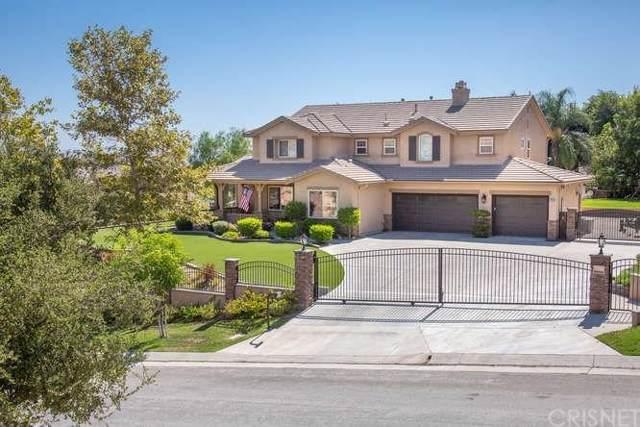 30058 Valley Glen Street, Castaic, CA 91384 (#SR19221806) :: Randy Plaice and Associates