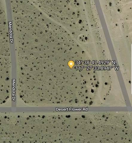 Mendota Drive, Adelanto, CA 92301 (#219011594) :: Lydia Gable Realty Group